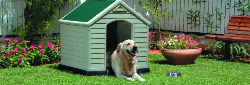 comment bien am nager son jardin pour garantir confort et s curit son chien le jardineur. Black Bedroom Furniture Sets. Home Design Ideas