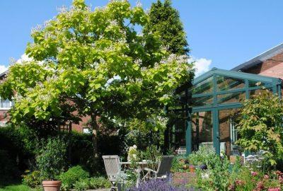 Jardin avec des un arbre et des haies