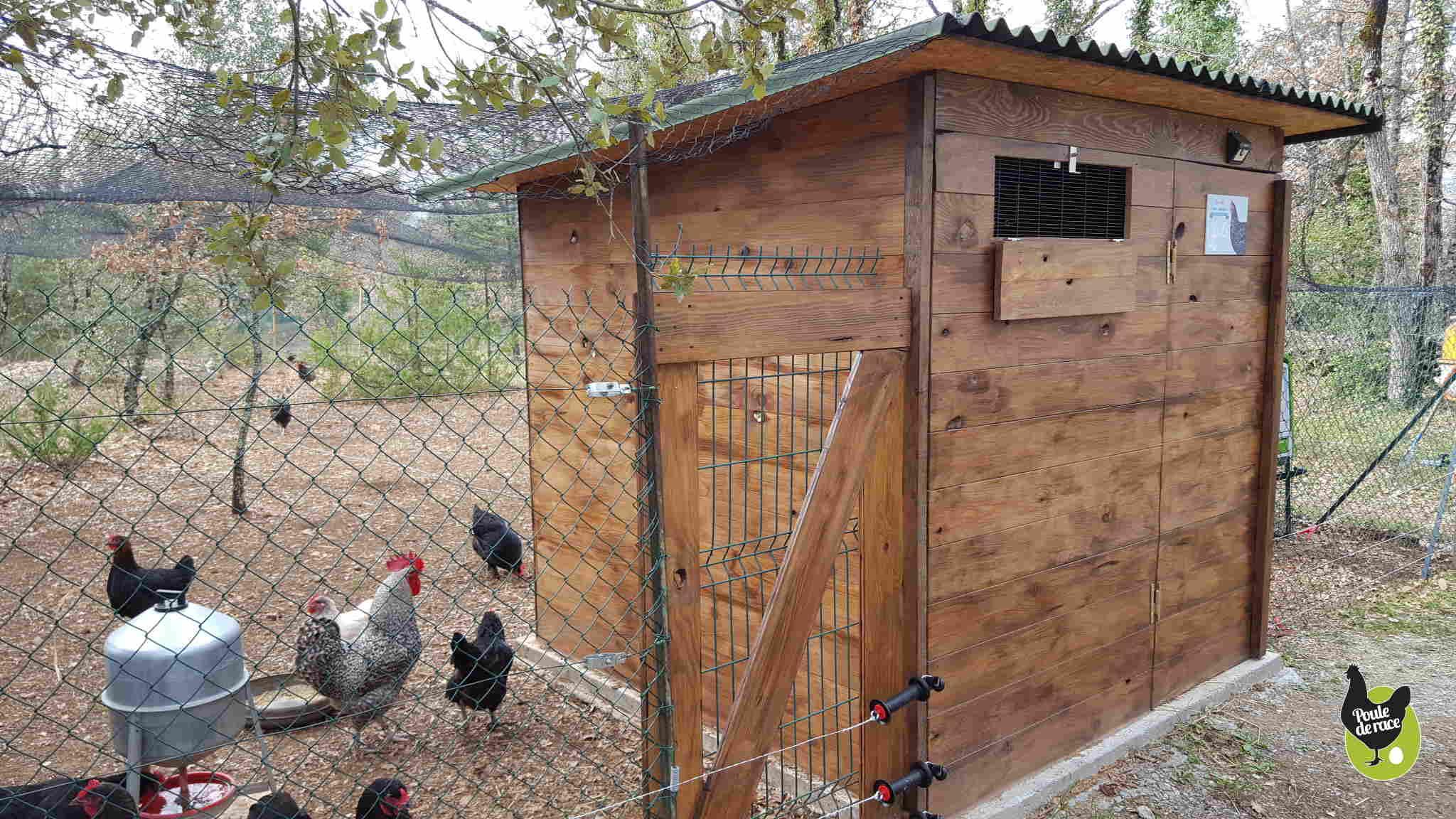 Envie d 39 un poulailler dans votre jardin d couvrez les - Installer un poulailler dans son jardin ...