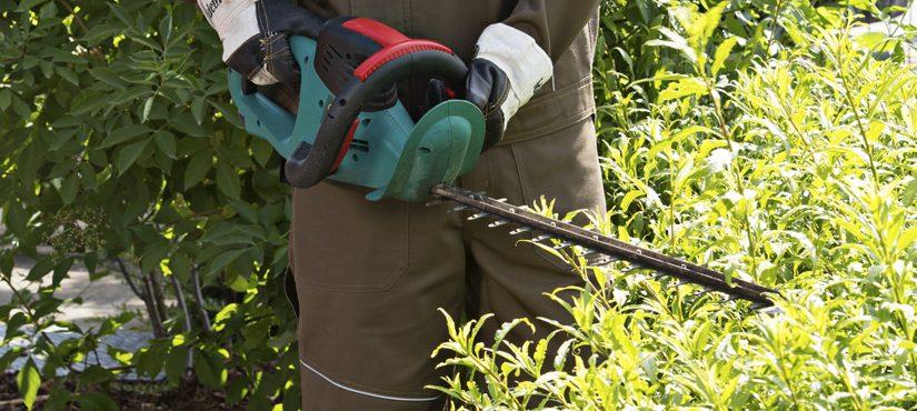 Une tenue adaptée pour jardiner en toute sécurité