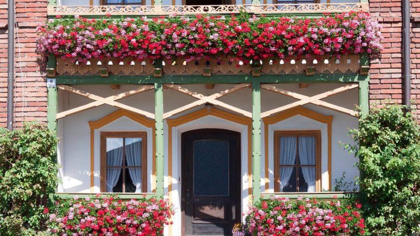 Quelles plantes choisir pour son balcon?