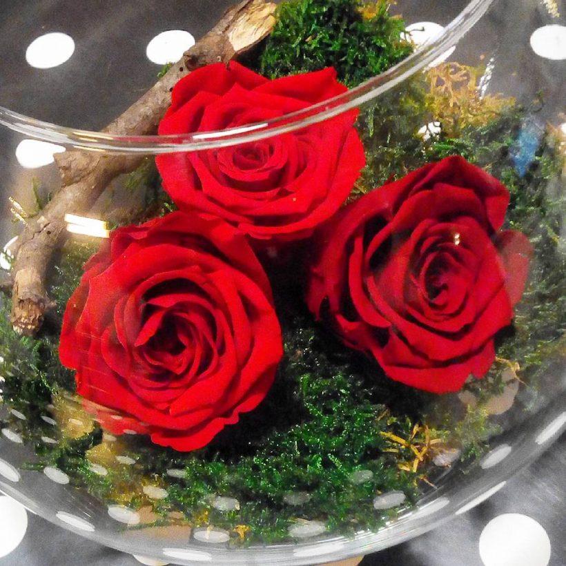 Tout Ce Qu Il Faut Savoir Sur Les Roses Eternelles Qui Ne Fanent Pas