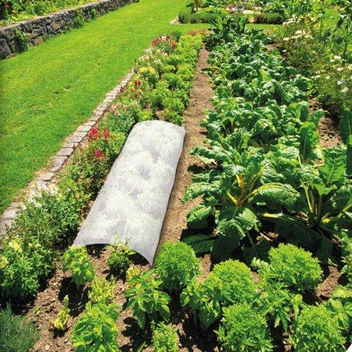 En hiver il est important de prot ger son jardin contre for Antorchas para jardin combustible